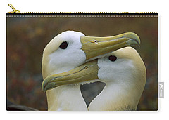 Waved Albatross Pair Bonding Galapagos Carry-all Pouch by Tui De Roy