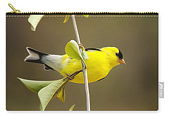 American Goldfinch Carry-all Pouch by Christina Rollo