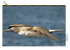 Blue-footed Booby Carry-all Pouch by William H. Mullins