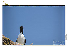 A Curious Bird Carry-all Pouch by Anne Gilbert