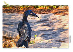 Abyssinian Ground Hornbill Carry-all Pouch by Chris Flees