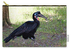 Abyssinian Ground-hornbill Carry-all Pouch by Gregory G. Dimijian
