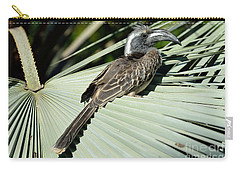 African Grey Hornbill Carry-all Pouch by George Atsametakis