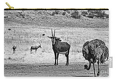 African Plains Carry-all Pouch by Douglas Barnard