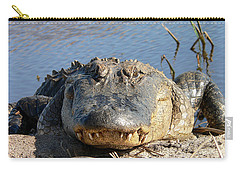 Alligator Approach Carry-all Pouch by Al Powell Photography USA