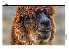 Alpaca Close-up On Utah Farm Carry-all Pouch by Gary Whitton