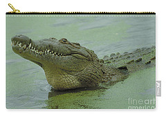 American Crocodile Carry-all Pouch by Raymond Cramm