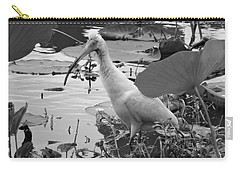 American White Ibis Black And White Carry-all Pouch by Dan Sproul