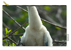 Anhinga Chick Carry-all Pouch by Mark Newman