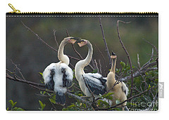Baby Anhinga Carry-all Pouch by Mark Newman