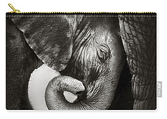 Baby Elephant Seeking Comfort Carry-all Pouch by Johan Swanepoel