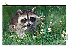 Baby Raccoon Carry-all Pouch by Jeanne White