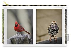 Backyard Bird Series Carry-all Pouch by Heather Applegate