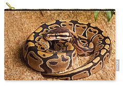 Ball Python Python Regius Coiled On Rock Carry-all Pouch by David Kenny
