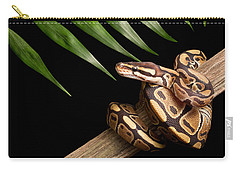 Ball Python Python Regius On Branch Carry-all Pouch by David Kenny