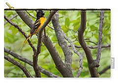 Baltimore Oriole Carry-all Pouch by Bill Wakeley