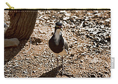 Banded Lapwing Carry-all Pouch by Douglas Barnard