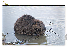 Beaver Chewing On Twig Carry-all Pouch by Chris Flees