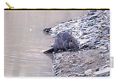 Beaver On Dry Land Carry-all Pouch by Chris Flees
