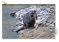 Beaver Sharpens Stick Carry-all Pouch by Chris Flees