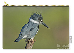Belted Kingfisher Carry-all Pouch by Anthony Mercieca