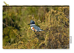 Belted Kingfisher Female Carry-all Pouch by Anthony Mercieca