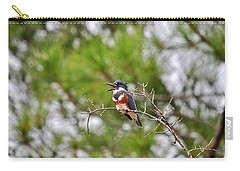 Belting Belted Carry-all Pouch by Al Powell Photography USA