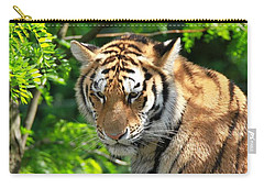 Bengal Tiger Portrait Carry-all Pouch by Dan Sproul
