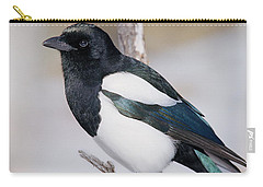 Black-billed Magpie Carry-all Pouch by Eric Glaser