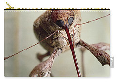 Black Oak Acorn Weevil Boring Into Acorn Carry-all Pouch by Mark Moffett