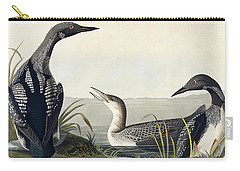 Black Throated Diver  Carry-all Pouch by John James Audubon