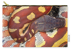 Blood Python Carry-all Pouch by Art Wolfe