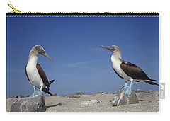 Blue-footed Booby Pair Galapagos Islands Carry-all Pouch by Tui De Roy