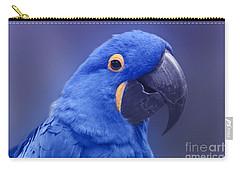 Blue Hyacinth Macaw - Anodorhynchus Hyacinthinus - Puohokamoa Hoolawa Maui Hawaii  Carry-all Pouch by Sharon Mau