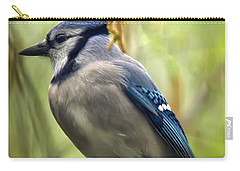 Blue Jay On A Misty Spring Day - Square Format Carry-all Pouch by Lois Bryan
