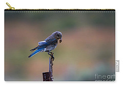 Bluebird Lunch Carry-all Pouch by Mike  Dawson