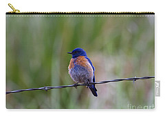 Bluebird On A Wire Carry-all Pouch by Mike  Dawson