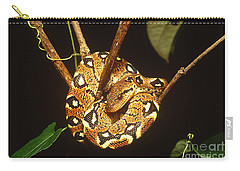 Boa Constrictor Carry-all Pouch by Art Wolfe