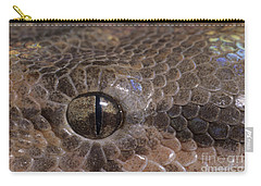 Boa Constrictor Carry-all Pouch by Chris Mattison FLPA
