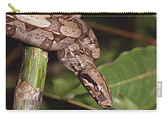 Boa Constrictor Coiled South America Carry-all Pouch by Gerry Ellis