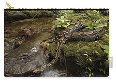 Boa Constrictor Crossing Stream Carry-all Pouch by Pete Oxford
