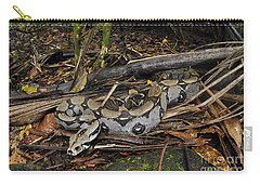 Boa Constrictor Carry-all Pouch by Francesco Tomasinelli