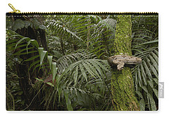 Boa Constrictor In The Rainforest Carry-all Pouch by Pete Oxford