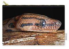 Carry-all Pouch featuring the photograph Brazilian Rainbow Boa Epicrates Cenchria by David Kenny