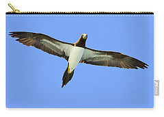Brown Booby Carry-all Pouch by Tony Beck
