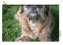 Brussels Griffon Carry-all Pouch by Edward Fielding