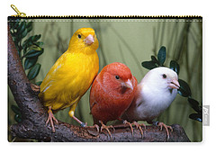 Canaries Carry-all Pouch by Hans Reinhard