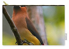 Cedar Wax Wing Carry-all Pouch by Roger Becker