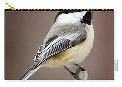 Chickadee Square Carry-all Pouch by Bill Wakeley