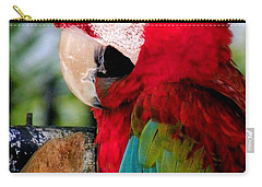 Chowtime Carry-all Pouch by Karen Wiles